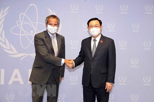 Chu tich Quoc hoi Vuong Dinh Hue gap Tong Giam doc IAEA hinh anh 1