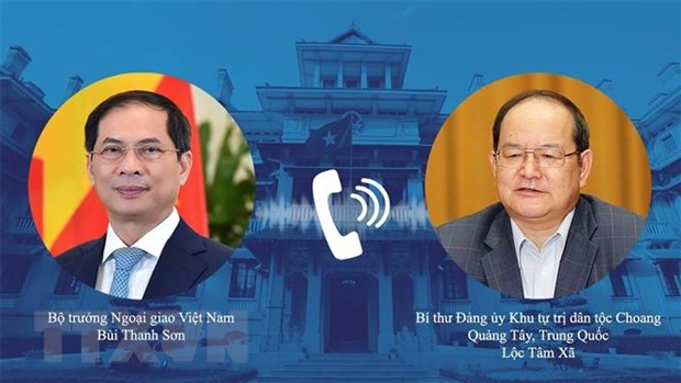 Bo truong Ngoai giao Bui Thanh Son dien dam voi Bi thu Quang Tay hinh anh 1