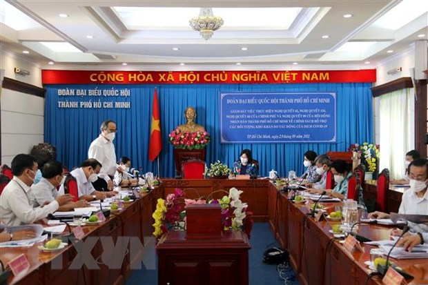 TP Ho Chi Minh can co chien luoc lau dai ung pho voi dich COVID-19 hinh anh 1