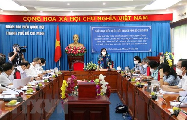 TP Ho Chi Minh can co chien luoc lau dai ung pho voi dich COVID-19 hinh anh 2
