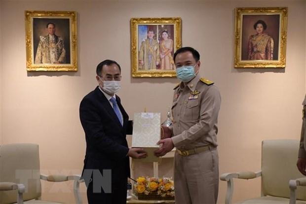 Viet Nam va Thai Lan thuc day hop tac ve y te trong boi canh dich hinh anh 1