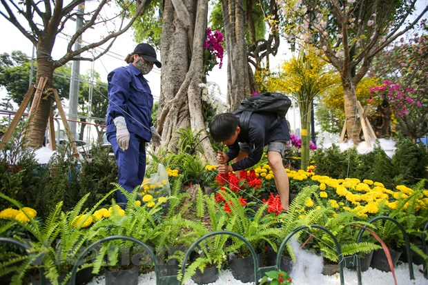 Le hoi hoa anh dao san sang mo cua don du khach Thu do hinh anh 15