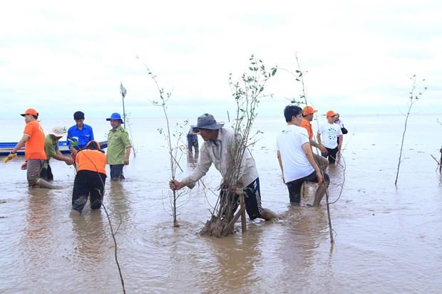 FPT phoi hop voi Hanh phuc xanh trong 2.000 cay ban tai Soc Trang hinh anh 1