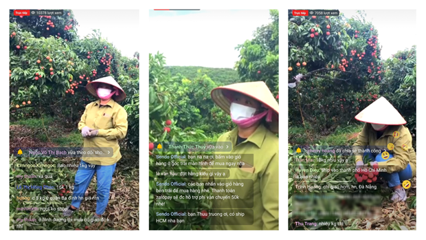 Livestream tren Sendo, nong dan Bac Giang ban 8 tan vai trong 40 phut hinh anh 1
