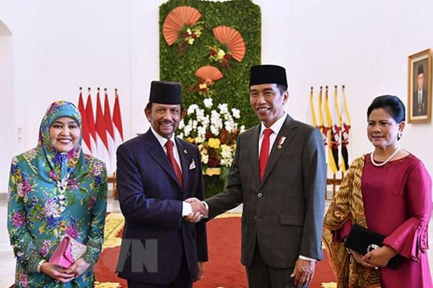 Indonesia va Brunei thuc day hop tac tren nhieu linh vuc hinh anh 1