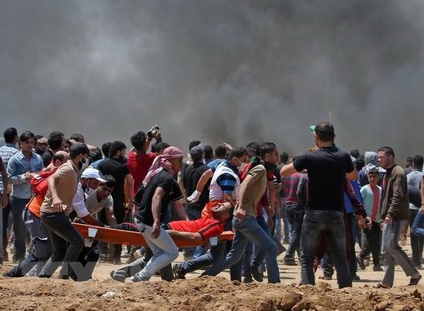 Ai Cap chi trich quan doi Israel tan cong dan thuong Palestine hinh anh 1