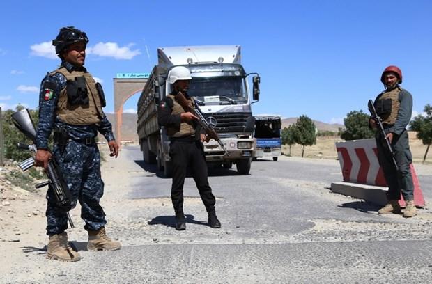 NATO hoan nghenh viec ngung ban cua Chinh phu Afghanistan voi Taliban hinh anh 1