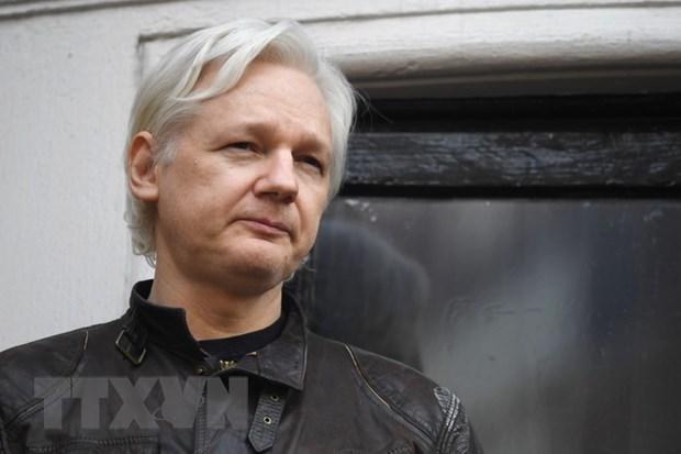 My keu goi nha sang lap WikiLeaks lam chung trong vu dieu tra Nga hinh anh 1