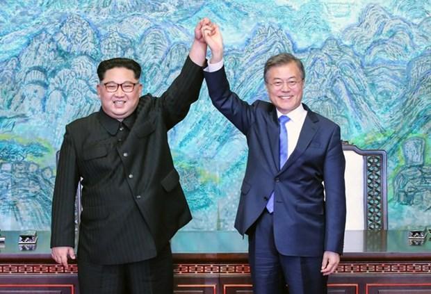 NIS: Chua co quyet dinh nao lien quan chuyen tham cua ong Kim Jong-un hinh anh 1