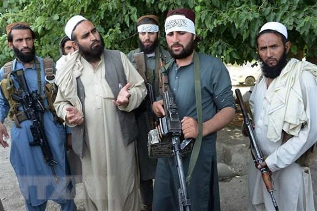 My tim kiem thoa thuan chinh tri giua Chinh phu Afghanistan va Taliban hinh anh 1