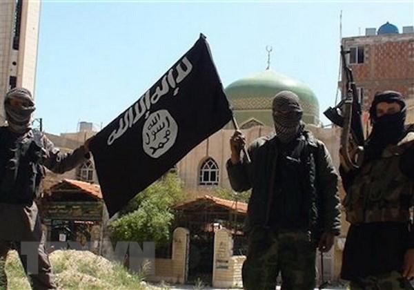 IS gia tang tan cong cac luc luong nguoi Kurd tai Syria hinh anh 1