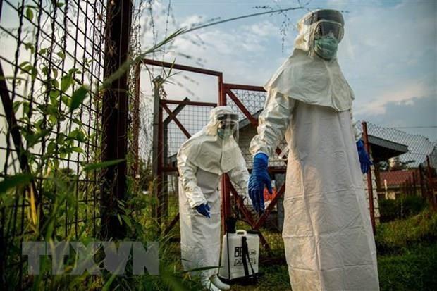 Hy vong moi ve vaccine da nang phong moi chung virus Ebola hinh anh 1