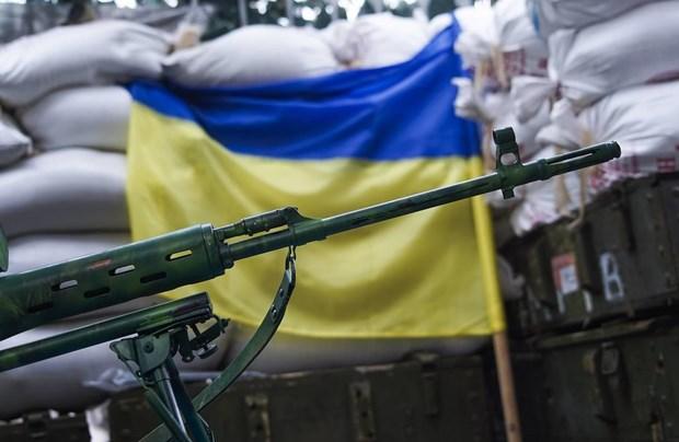 My va Ukraine thao luan ve van de mua sam truc tiep vu khi hinh anh 1
