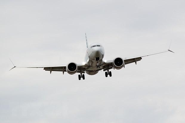 Boeing 737 Max: Lieu co phai mot mau so chung tinh co? hinh anh 1