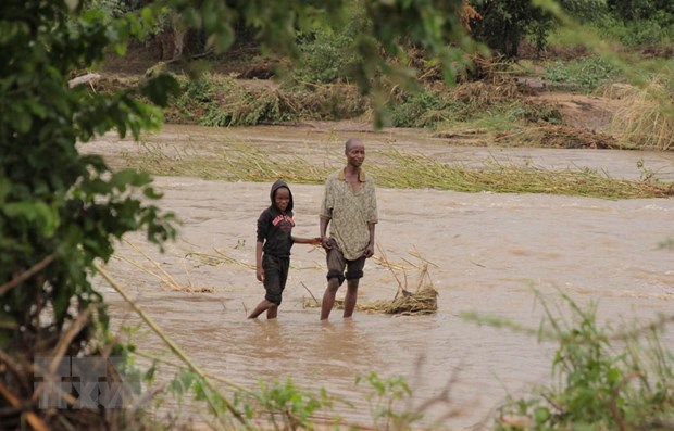 Bao Idai khien 15.000 nguoi o Mozambique bi co lap trong nuoc lu hinh anh 1