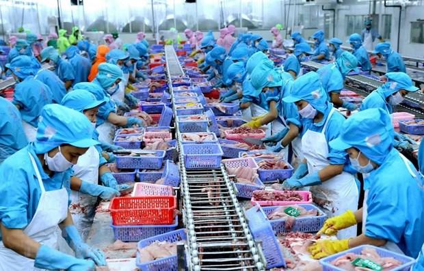 Thủy sản Việt Nam nỗ lực hiện thực hóa những lợi ích từ CPTPP