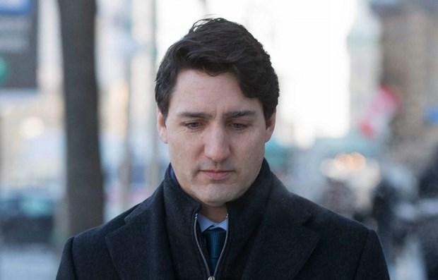 Thu tuong Canada Justin Trudeau bi giam tin nhiem truoc bau cu hinh anh 1