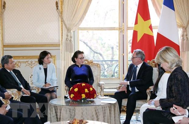 Chủ tịch Quốc hội tiến hành hội đàm với Chủ tịch Hạ viện Pháp - 1