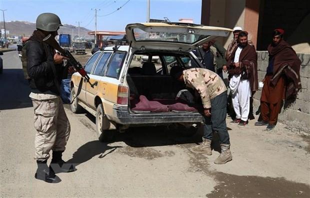 Taliban tan cong can cu khong quan lon nhat cua My tai Afghanistan hinh anh 1