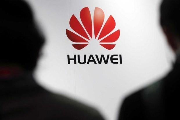 Chi nhanh Huawei tai Australia canh bao se cat giam mot nua nhan su hinh anh 1