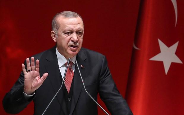 Tho Nhi Ky bat dau chien dich chong nguoi Kurd tai Syria hinh anh 1