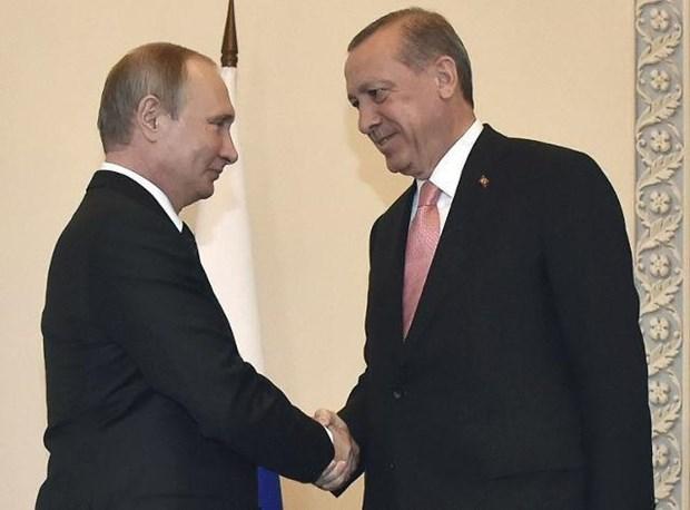 Tong thong Putin muon nhieu thong tin hon tu nguoi dong cap Tho Nhi Ky hinh anh 1