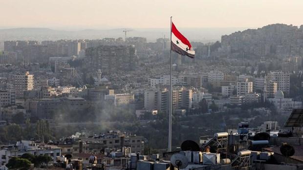 Syria huong toi viec thanh lap uy ban xem xet lai hien phap hinh anh 1