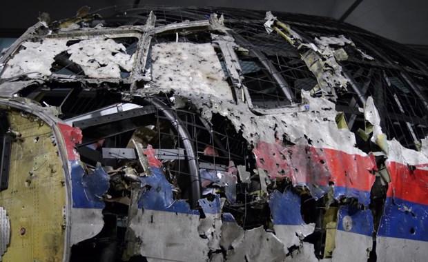 Ha Lan: Bat dau xet xu vu tai nan may bay MH17 cua Malaysia Airlines hinh anh 1
