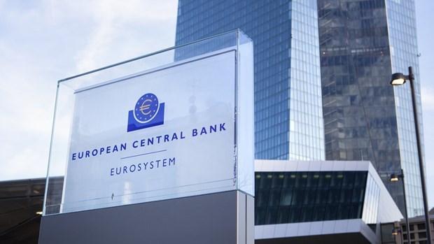 ECB keu goi Eurozone xem xet phat hanh 'trai phieu corona' hinh anh 1