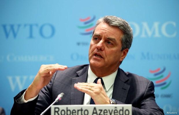 WTO: Suy thoai do COVID-19 se nghiem trong hon cuoc khung hoang 2008 hinh anh 1