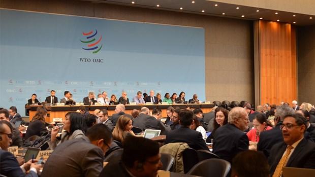 WTO dang gap kho do su troi day cua chu nghia don phuong hinh anh 1