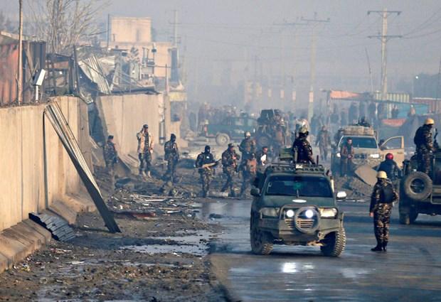 Taliban bat ngo tuyen bo ngung ban 3 ngay tai Afghanistan hinh anh 1