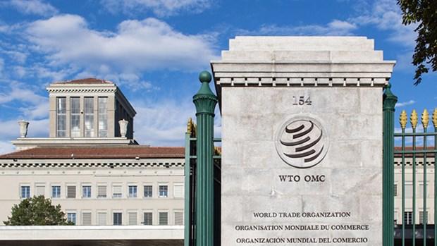 Cac ung cu vien buoc vao cuoc dua cho vi tri Tong Giam doc WTO hinh anh 1
