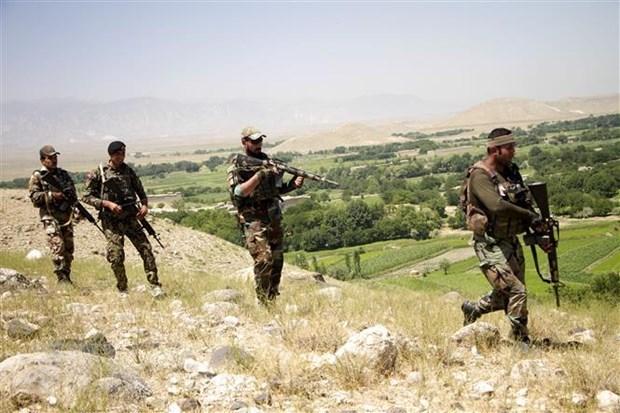 Afghanistan tieu diet gan 50 phien quan Taliban o mien Bac hinh anh 1