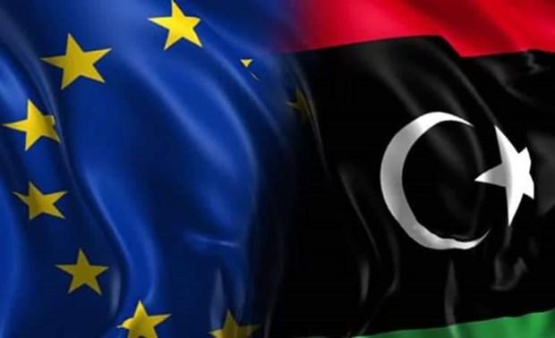 EU trung phat 3 cong ty vi pham lenh cam van vu khi voi Libya hinh anh 1