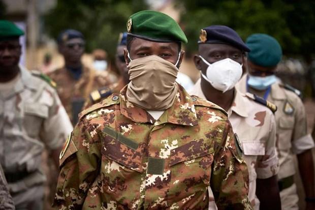 ECOWAS tuyen bo duy tri cac bien phap trung phat doi voi Mali hinh anh 1