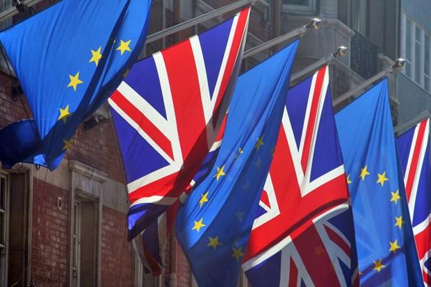 Bat dong van con trong dam phan thuong mai giua EU va Anh hinh anh 1