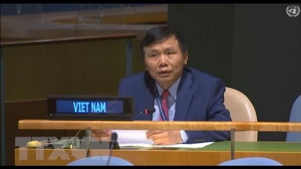 Viet Nam keu goi do bo cac bien phap trung phat don phuong hinh anh 1