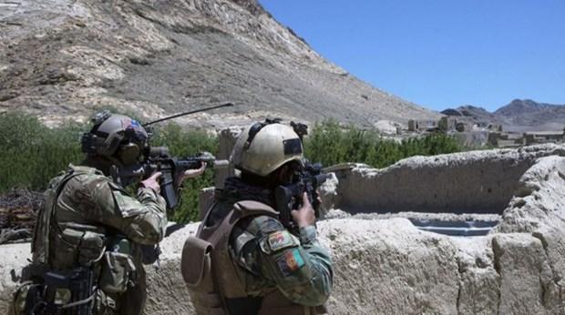Afghanistan: Giao tranh ac liet, hon 50 tay sung Taliban bi tieu diet hinh anh 1
