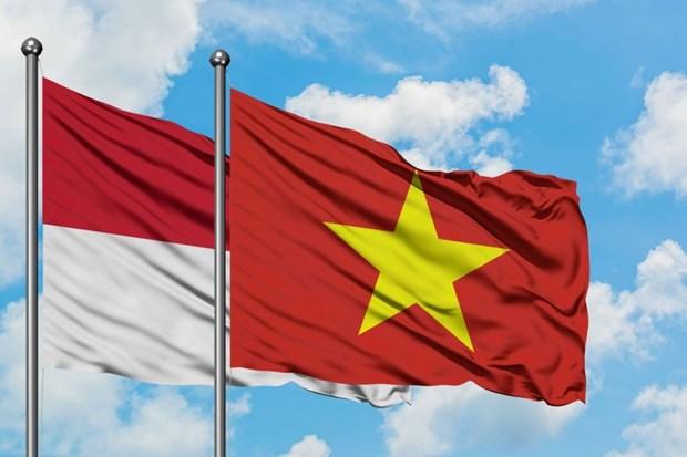 Viet Nam va Indonesia huong toi tang cuong quan he hop tac hinh anh 1
