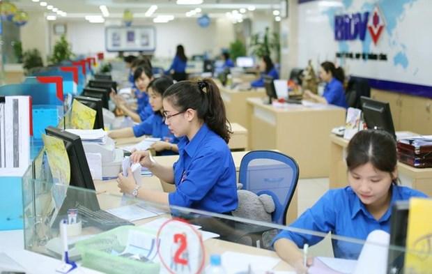 BIDV mua lai 3300 ty dong trai phieu tang von phat hanh dot 1 nam 2014 hinh anh 1