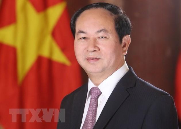 Chủ tịch nước Trần Đại Quang. (Nguồn: TTXVN)