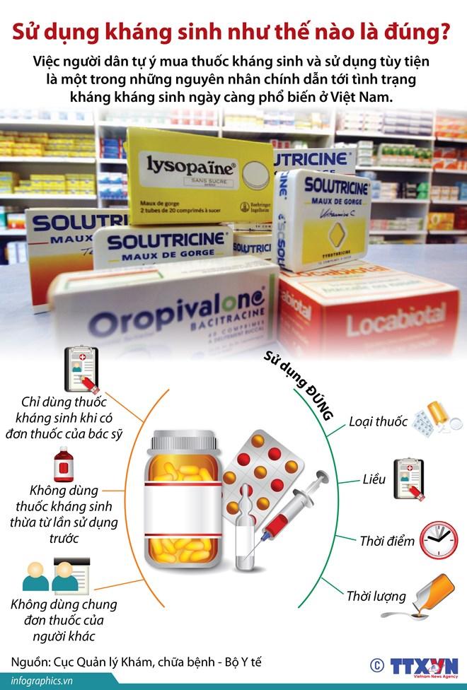 [Infographics] Sử dụng kháng sinh như thế nào là đúng cách?