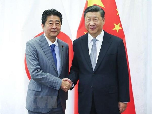 Thủ tướng Nhật Bản Shinzo Abe (trái) và Chủ tịch Trung Quốc Tập Cận Bình tại cuộc gặp ở thành phố Vladivostok của Nga ngày 12-9. Ảnh: THX/TTXVN