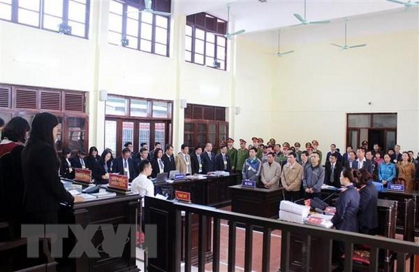 Xét xử vụ án chạy thận: Luật sư bào chữa cho Hoàng Công Lương - ảnh 1