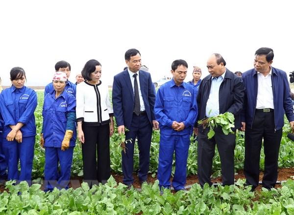 Áp dụng mạnh mẽ khoa học và công nghệ vào sản xuất nông nghiệp - ảnh 1