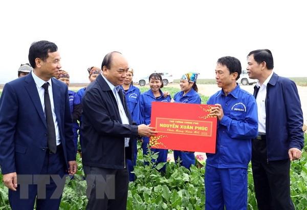 Áp dụng mạnh mẽ khoa học và công nghệ vào sản xuất nông nghiệp - ảnh 2
