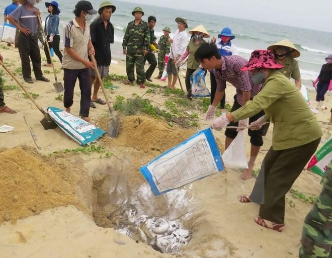10 su kien noi bat cua Viet Nam nam 2016 do TTXVN binh chon hinh anh 6