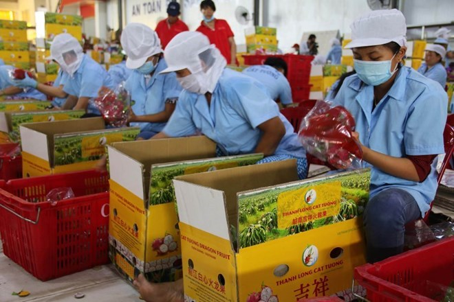 Su kien trong nuoc 6-12/11: Hoi nghi APEC thong qua Tuyen bo Da Nang hinh anh 5