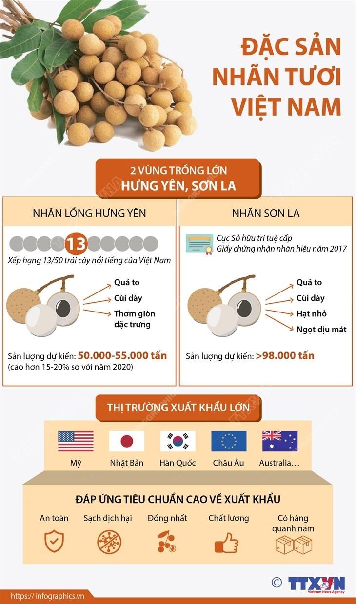 [Infographics] Dac san nhan tuoi Viet Nam vuon minh ra the gioi hinh anh 1